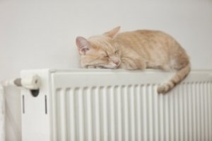 Конвекторне опалення для будинку