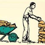 Дрова для дров'яного котла: правила складування та зберігання