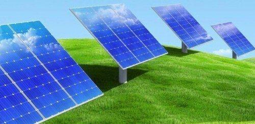 Сонячні панелі в полі на траві.