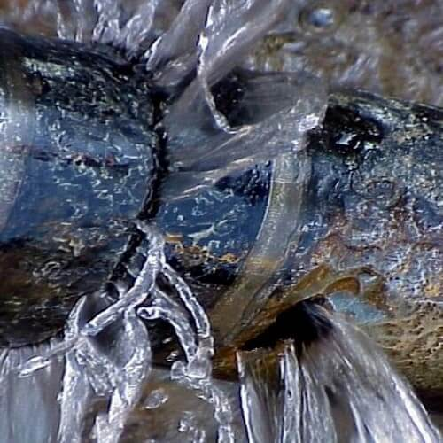 Протікаюча каналізаційна труба.